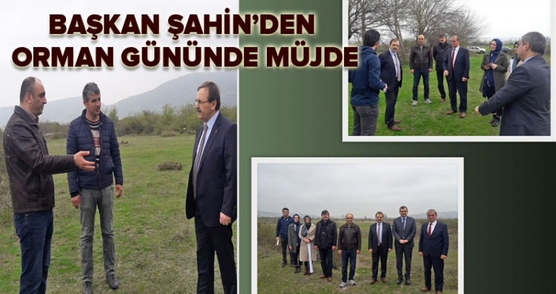 Başkan Şahin'den Orman Günü'nde müjde