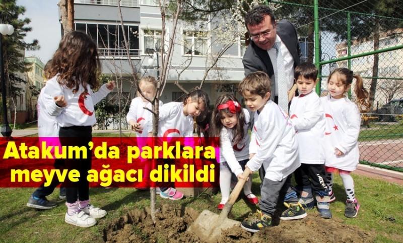 Başkan Taşçı çocuklarda meyve ağacı dikti
