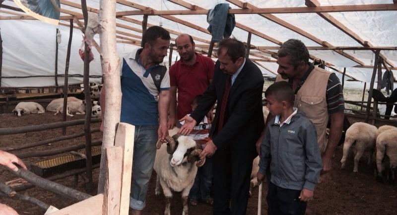 CHP Samsun Milletvekili Hayati Tekin Kurban pazarlarının nabzını tuttu