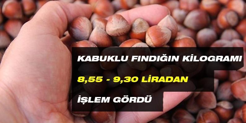 Kabuklu fındığın kilogramı 8,55 - 9,30 liradan işlem gördü