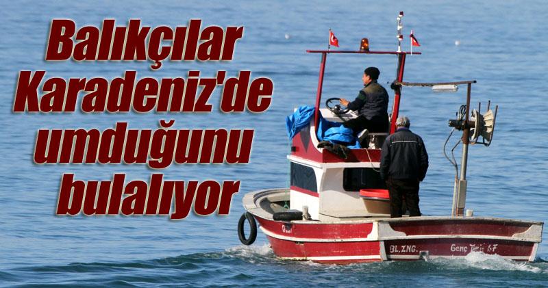 Karadeniz'de neden balık kıtlığı yaşanıyor!