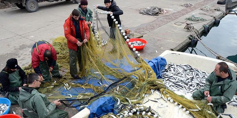 Karadenizli balıkçıların kefal sevinci