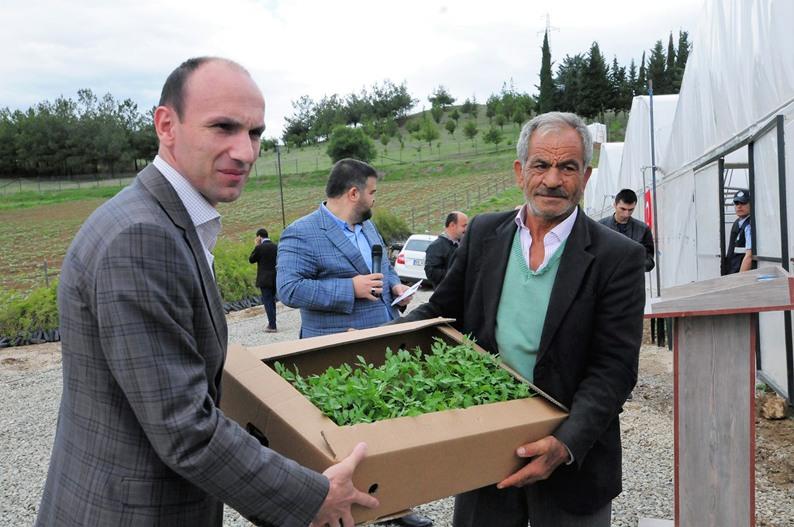 Samsun'da çiftçilere ücretsiz sebze ve meyve fidesi dağıtıldı