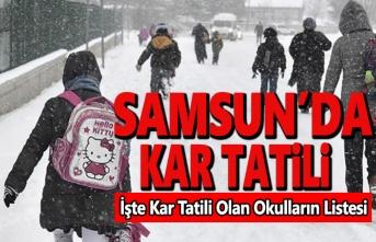 Samsun'da Okullara Kar Tatili ,İşte Tatil Edilen Okulların Listesi