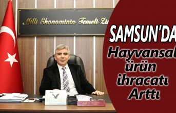 Samsun'da Hayvansal Ürün İhracatı Arttı