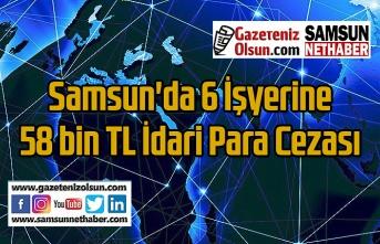 Samsun'da Duman-9 Operasyonu'nda 6 işyerine para cezası verildi