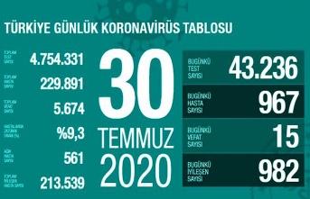 30 Temmuz Türkiye koronavirüs tablosu - Yeni Hastalar artıyor!