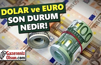 Dolar Euro Kaç Lira oldu, 15 Ekim Döviz Piyasalarında son Durum!