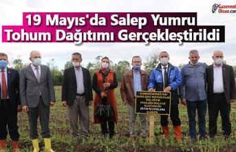 19 Mayıs'da Salep Yumru Tohum Dağıtımı Gerçekleştirildi