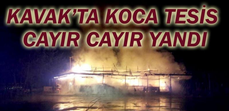 Kavak Güven Göleti Mesire Alanı'ndaki sosyal tesis yandı