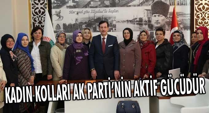 Erdoğan Tok: Kadınlar gözümüz kulağımız