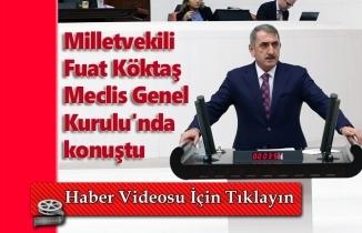 Milletvekili Köktaş Meclis Genel Kurulu'nda konuştu